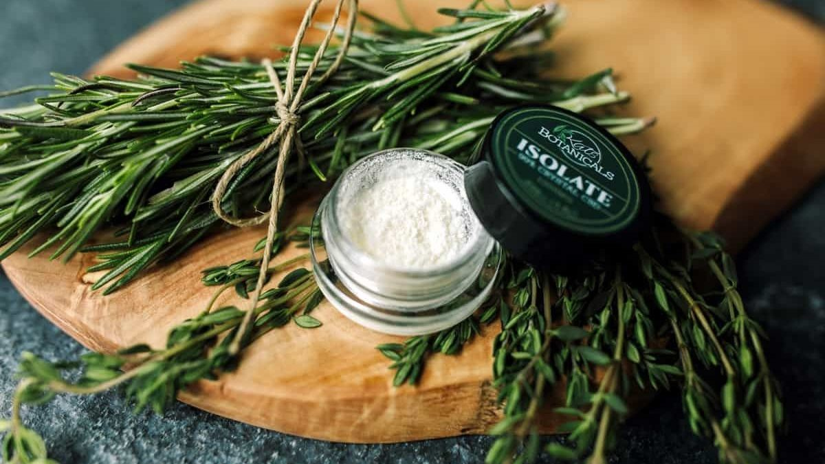 Popular Types and Benefits of CBD Wholesale Isolate